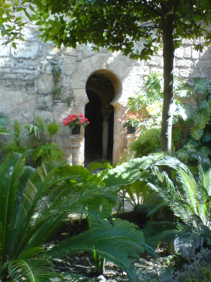 View into one of botanical gardens in Mallorca